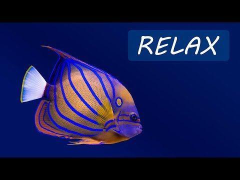 relaxing sleep sounds